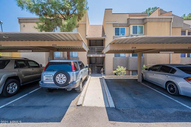 18811 N 19TH Avenue #1014, Phoenix, AZ 85027 (MLS #6274796) :: Yost Realty Group at RE/MAX Casa Grande