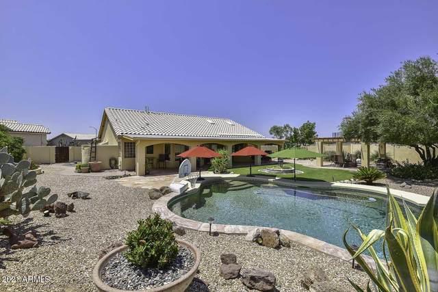6918 W Williams Drive, Glendale, AZ 85310 (MLS #6274820) :: Yost Realty Group at RE/MAX Casa Grande