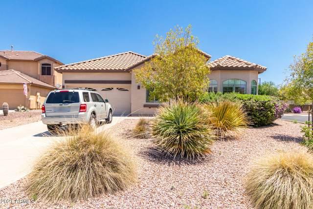 42113 N 45TH Glen, Phoenix, AZ 85086 (#6274865) :: AZ Power Team