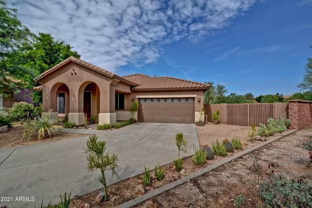 26498 N 84TH Drive, Peoria, AZ 85383 (MLS #6274868) :: Yost Realty Group at RE/MAX Casa Grande