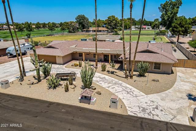 11006 E Vecino Street, Chandler, AZ 85248 (MLS #6274871) :: CANAM Realty Group
