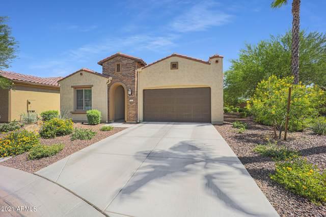 16963 W Granada Road W, Goodyear, AZ 85395 (MLS #6274931) :: Justin Brown | Venture Real Estate and Investment LLC