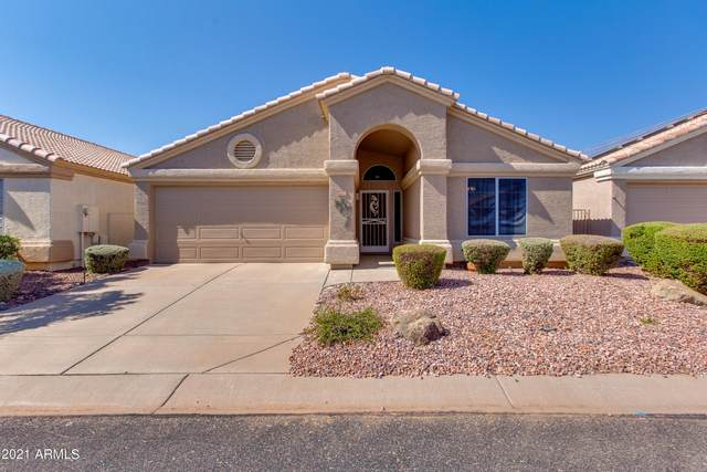13980 W Santee Way, Surprise, AZ 85374 (MLS #6274933) :: Justin Brown   Venture Real Estate and Investment LLC