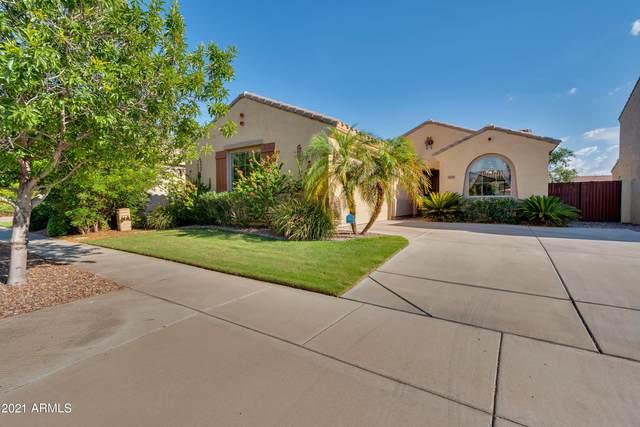 4647 E Timberline Road, Gilbert, AZ 85297 (MLS #6274965) :: The Riddle Group