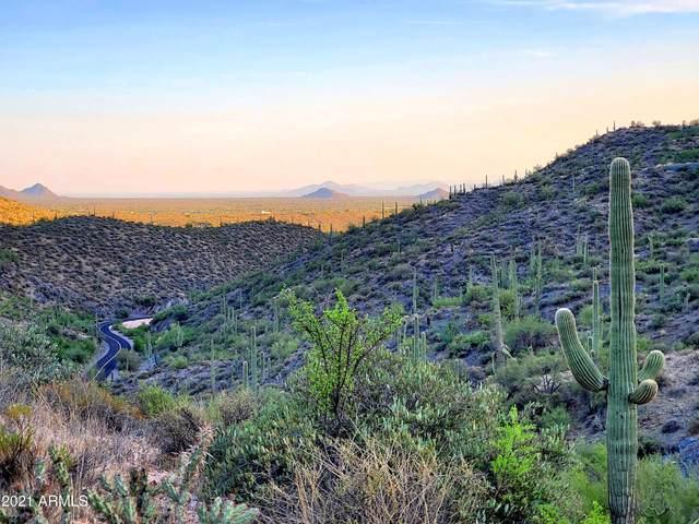 41925 N Roundup Drive, Scottsdale, AZ 85262 (MLS #6274967) :: The Garcia Group