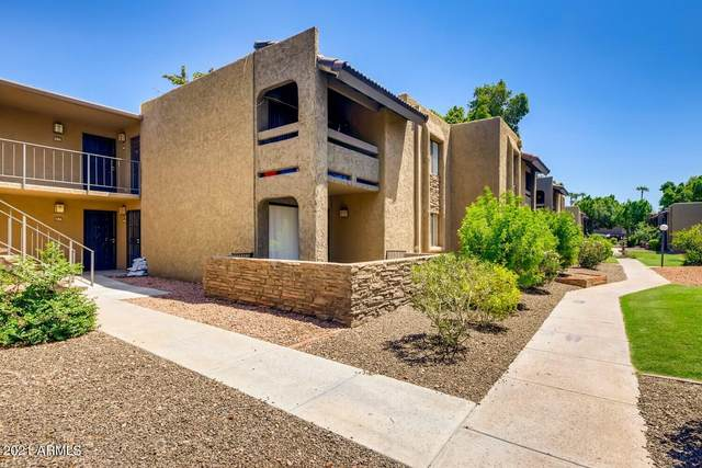 3825 E Camelback Road E #186, Phoenix, AZ 85018 (MLS #6275016) :: Arizona 1 Real Estate Team