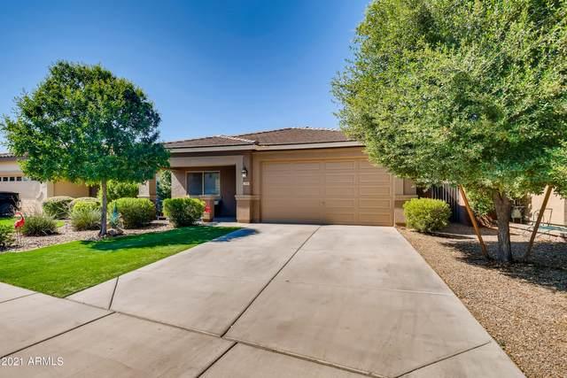 784 W Harvest Road, San Tan Valley, AZ 85140 (#6275030) :: AZ Power Team