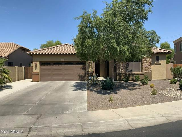 3891 S Halsted Drive, Chandler, AZ 85286 (MLS #6275102) :: Justin Brown | Venture Real Estate and Investment LLC