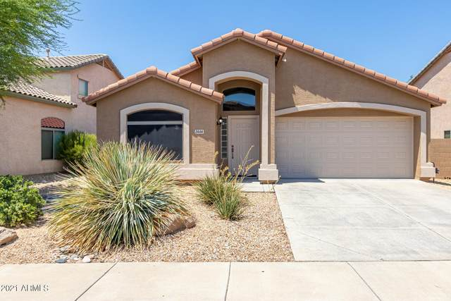 2406 W Lucia Drive, Phoenix, AZ 85085 (MLS #6275107) :: Justin Brown | Venture Real Estate and Investment LLC