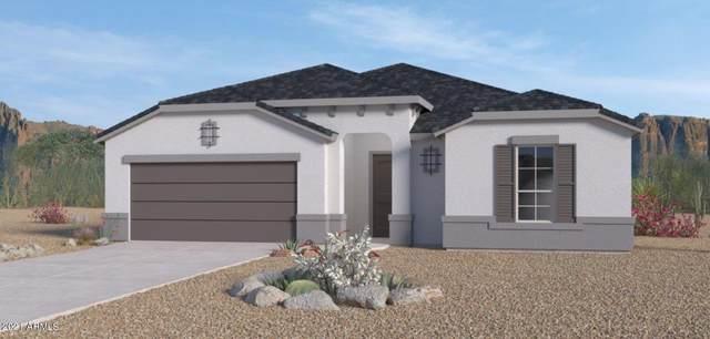 43983 W Palo Ceniza Way, Maricopa, AZ 85138 (MLS #6275129) :: The Riddle Group