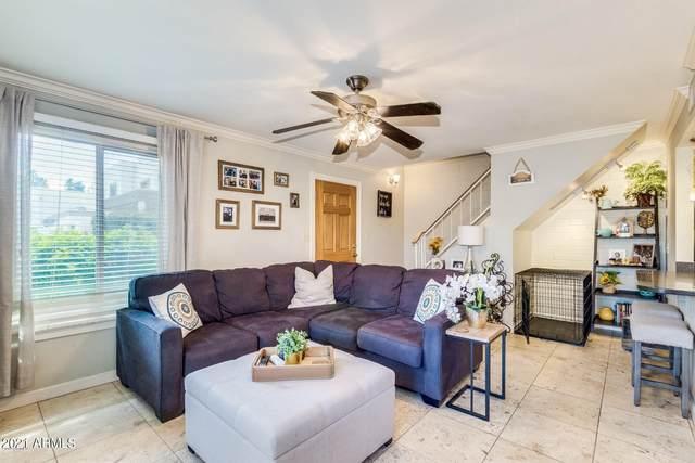 7805 E Valley Vista Drive, Scottsdale, AZ 85250 (MLS #6275153) :: Justin Brown   Venture Real Estate and Investment LLC