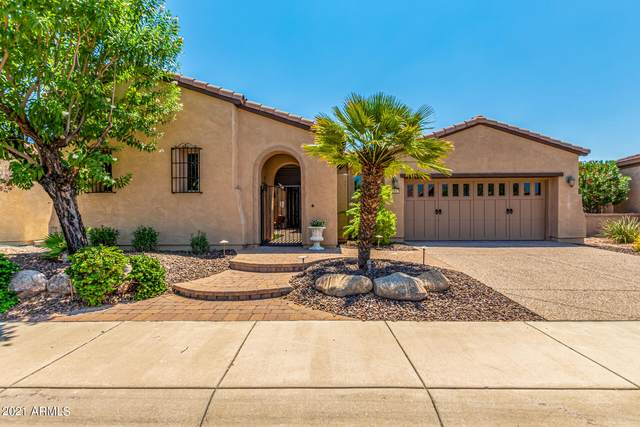 12657 W Fetlock Trail, Peoria, AZ 85383 (MLS #6275161) :: Justin Brown | Venture Real Estate and Investment LLC
