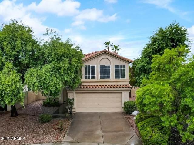 9223 E Caribbean Lane, Scottsdale, AZ 85260 (MLS #6275209) :: Elite Home Advisors