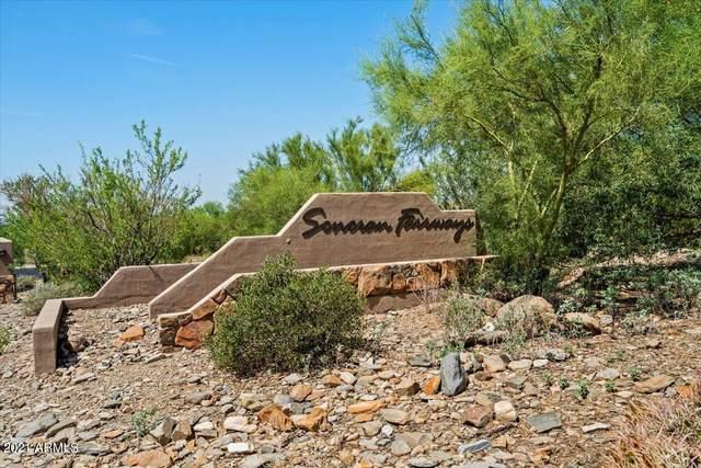 10431 E Sheena Drive, Scottsdale, AZ 85255 (MLS #6275289) :: The Everest Team at eXp Realty
