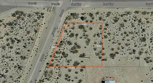 580 W Ives Way, Meadview, AZ 86444 (MLS #6275303) :: Yost Realty Group at RE/MAX Casa Grande