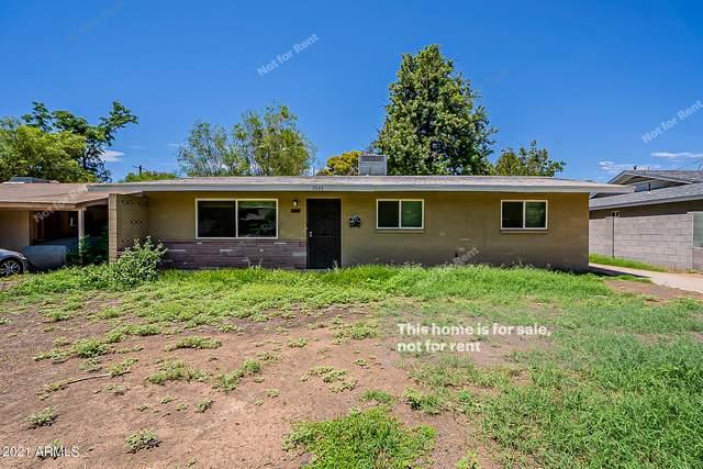 3626 N 40TH Street, Phoenix, AZ 85018 (MLS #6275449) :: Elite Home Advisors