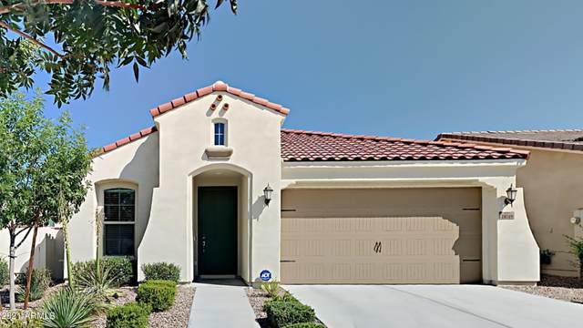 10540 E Durant Drive, Mesa, AZ 85212 (MLS #6275492) :: Elite Home Advisors