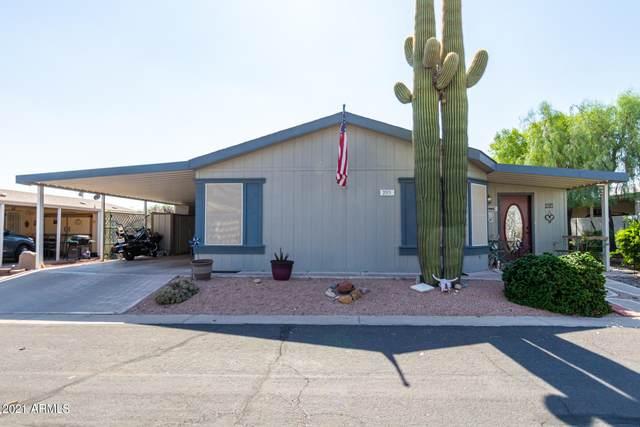 2400 E Baseline Avenue #295, Apache Junction, AZ 85119 (MLS #6275570) :: Zolin Group