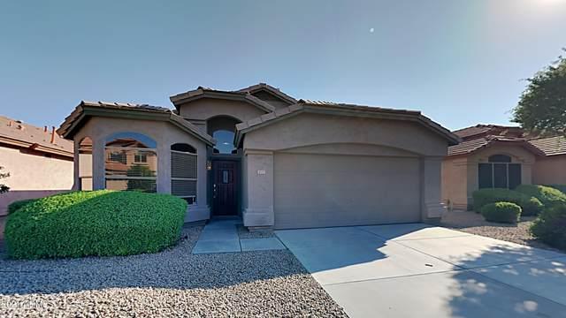 4723 E Weaver Road, Phoenix, AZ 85050 (MLS #6275695) :: The Riddle Group