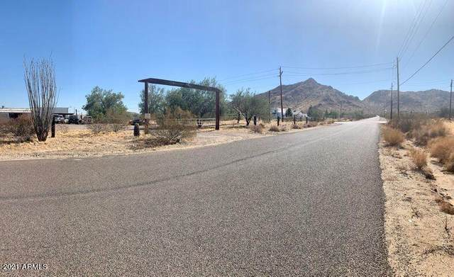 35141 N Ellsworth Road, Queen Creek, AZ 85142 (MLS #6275735) :: The Riddle Group