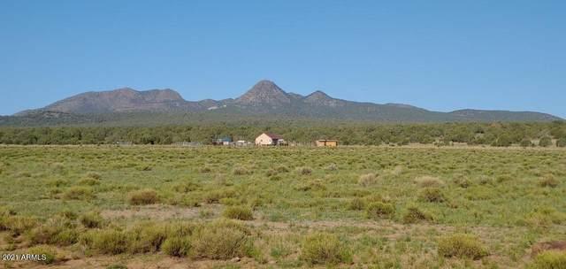 12700 N Mad Man Mountain Road, Williams, AZ 86046 (MLS #6275751) :: Dave Fernandez Team | HomeSmart