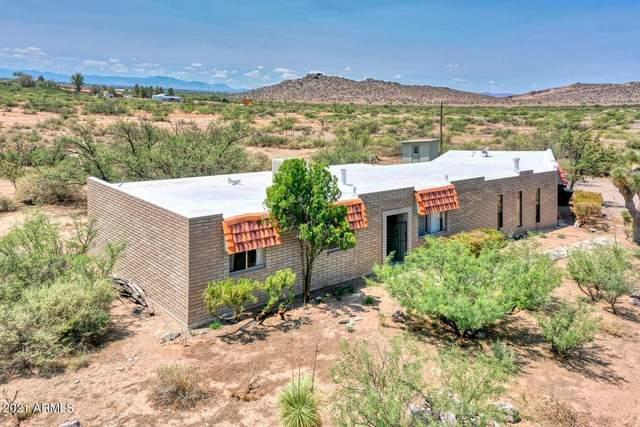 1387 E Old Stewart Road, Willcox, AZ 85643 (MLS #6275789) :: Elite Home Advisors