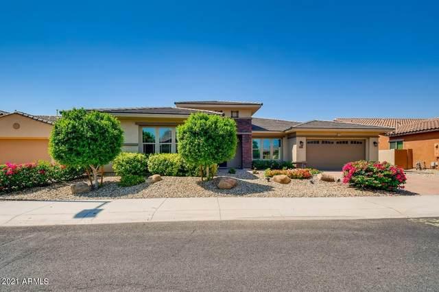 15951 W Bonitos Drive, Goodyear, AZ 85395 (MLS #6275812) :: Executive Realty Advisors