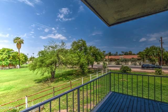 3745 E Hermosa Vista Drive, Mesa, AZ 85215 (MLS #6275843) :: Zolin Group