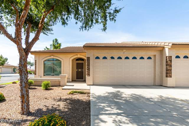 10960 E Monte Avenue #173, Mesa, AZ 85209 (MLS #6275999) :: The Riddle Group