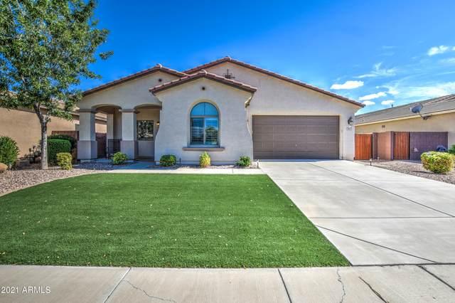 687 W Dragon Tree Avenue, San Tan Valley, AZ 85140 (MLS #6276360) :: Klaus Team Real Estate Solutions