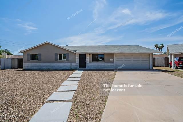 3331 S Shafer Drive, Tempe, AZ 85282 (MLS #6276546) :: Elite Home Advisors