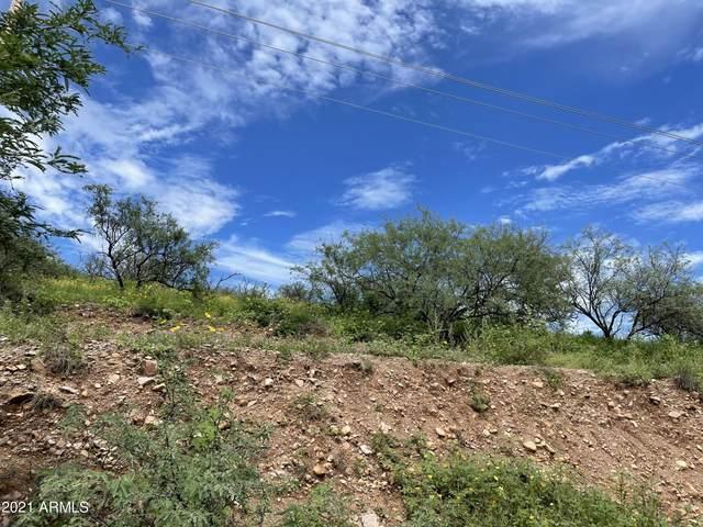 1058 Via Independencia, Rio Rico, AZ 85648 (MLS #6277049) :: The Daniel Montez Real Estate Group