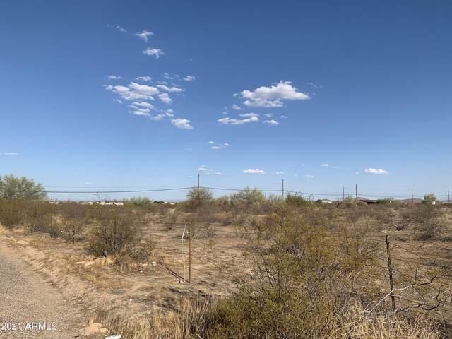 1239 W Bonnie Lane, Queen Creek, AZ 85142 (MLS #6277070) :: Fred Delgado Real Estate Group