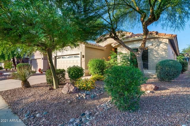 7510 E Palo Brea Drive, Gold Canyon, AZ 85118 (MLS #6277087) :: Executive Realty Advisors