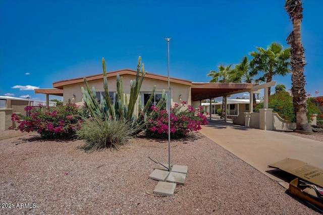 26252 S Yucca Circle, Sun Lakes, AZ 85248 (MLS #6277274) :: Jonny West Real Estate