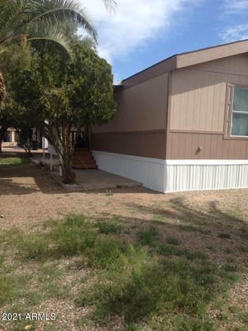 7466 E Irwin Avenue, Mesa, AZ 85209 (MLS #6277287) :: Executive Realty Advisors
