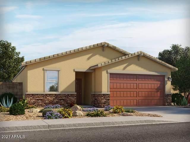4308 E Clydesdale Street, San Tan Valley, AZ 85140 (MLS #6277311) :: Yost Realty Group at RE/MAX Casa Grande