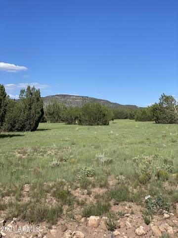 00 N Anvil Rock Road, Seligman, AZ 86337 (MLS #6277339) :: Executive Realty Advisors