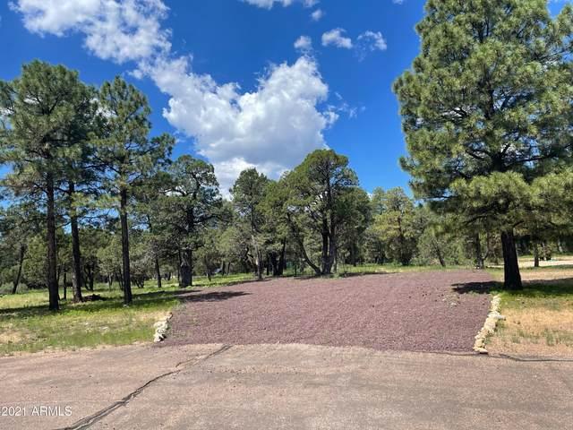 2862 Buck Circle, Overgaard, AZ 85933 (MLS #6277364) :: The Copa Team | The Maricopa Real Estate Company