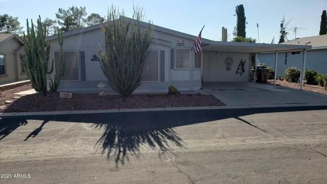 40532 N Eagle Street, San Tan Valley, AZ 85140 (MLS #6277564) :: Zolin Group