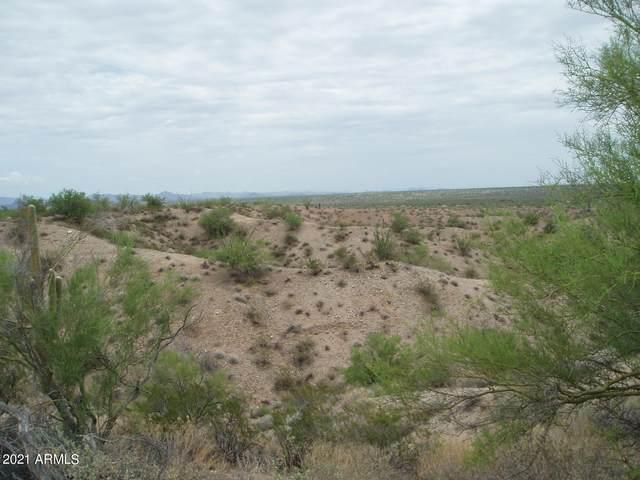 288XX W Dove Valley Road, Unincorporated County, AZ 85361 (MLS #6277732) :: The Ellens Team