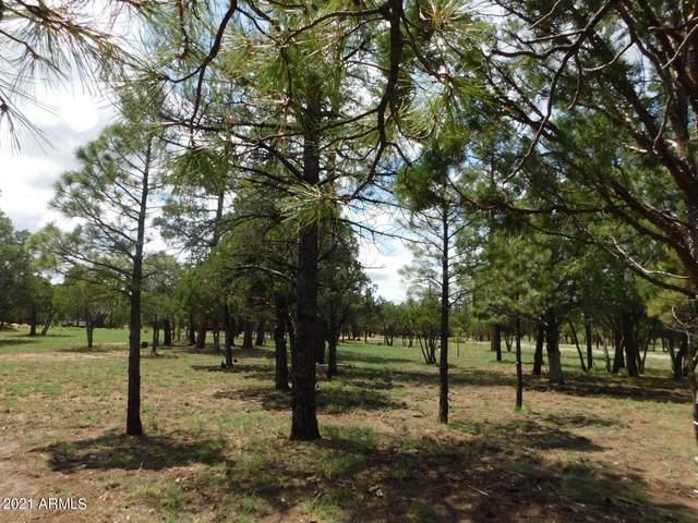 2707 Deer Path, Happy Jack, AZ 86024 (MLS #6277763) :: The Garcia Group