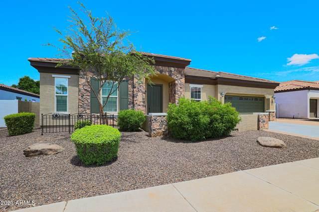 4180 E Canyon Way, Chandler, AZ 85249 (MLS #6278097) :: Yost Realty Group at RE/MAX Casa Grande
