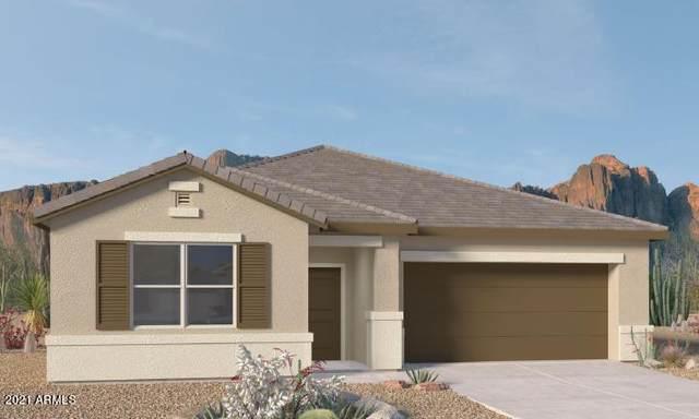 1072 W Castle Court, Casa Grande, AZ 85122 (MLS #6278197) :: Yost Realty Group at RE/MAX Casa Grande