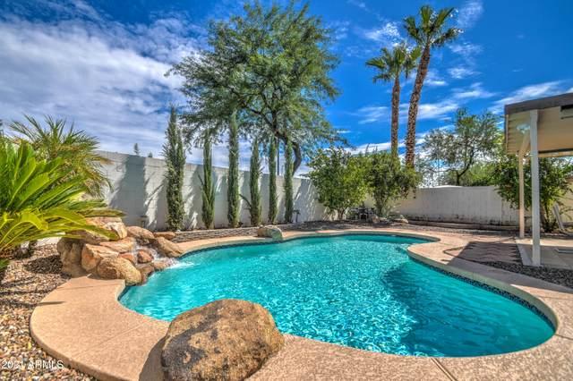 9338 E Olla Avenue, Mesa, AZ 85212 (MLS #6278757) :: Elite Home Advisors