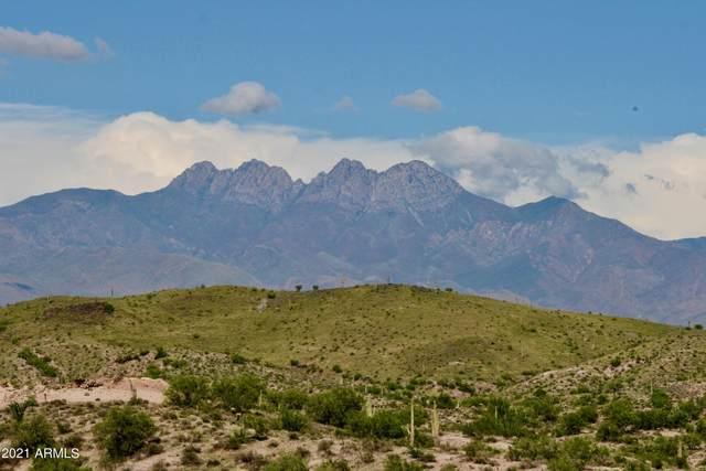 13316 N Blue Coyote Trail, Fort McDowell, AZ 85264 (MLS #6278779) :: The Garcia Group