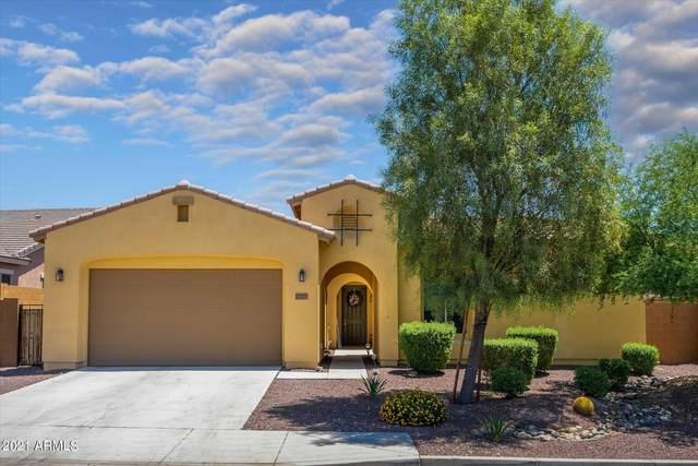 27175 N 81ST Lane, Peoria, AZ 85383 (MLS #6278882) :: Maison DeBlanc Real Estate