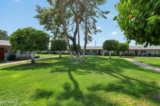 14020 N Newcastle Drive, Sun City, AZ 85351 (MLS #6278921) :: Executive Realty Advisors