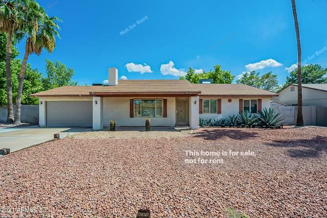 14426 N 42ND Place, Phoenix, AZ 85032 (MLS #6278991) :: Elite Home Advisors