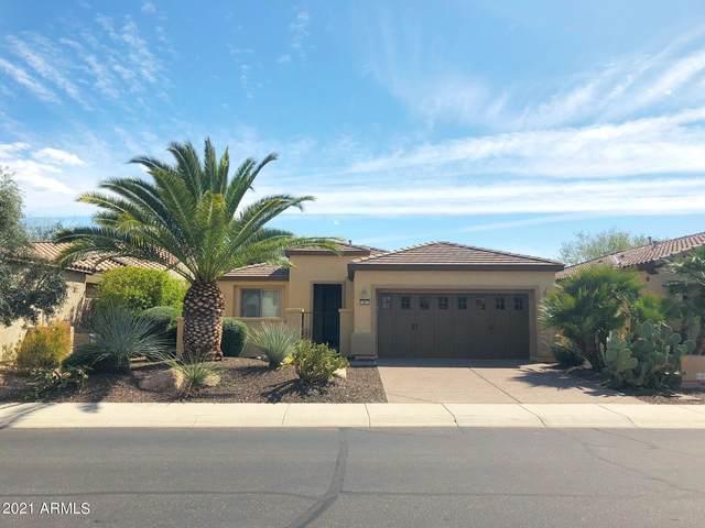 12631 W Pinnacle Vista Drive, Peoria, AZ 85383 (MLS #6279056) :: Elite Home Advisors